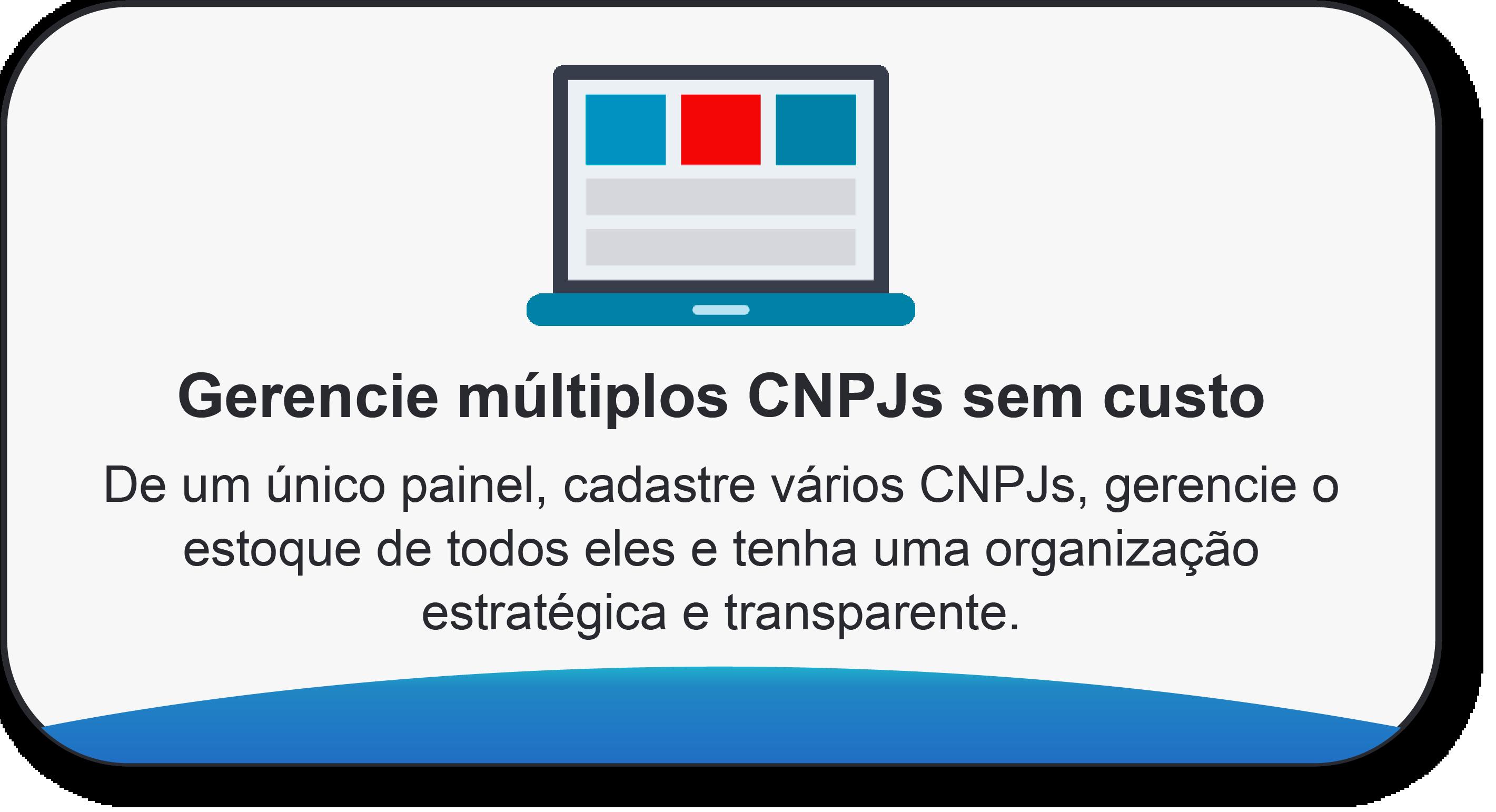 gerencie_multiplos_cnpjs_com_magis5